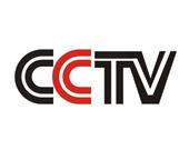 炫彩印刷合作伙伴cctv ()